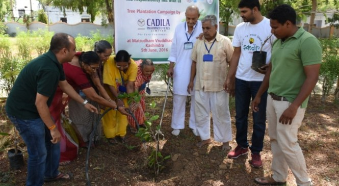 Unique Environment Day Celebrations at Cadila Pharmaceuticals