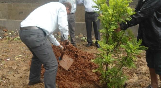 Mumbai Airport Plants Trees During Van Mahostav