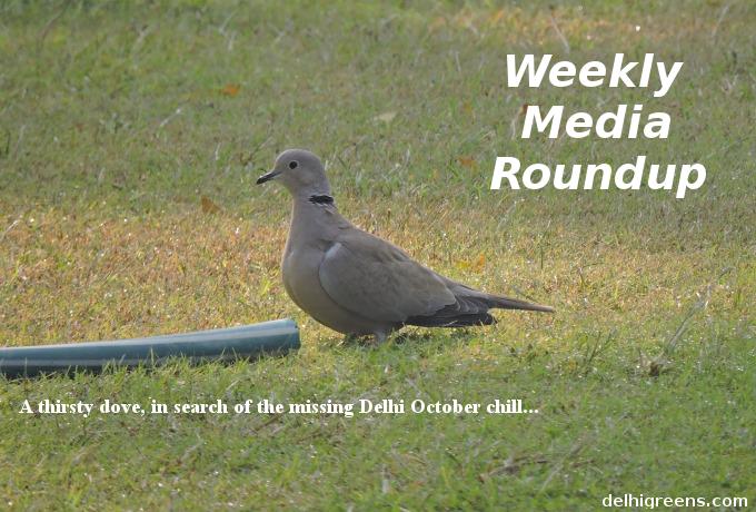 weekly-green-news-delhi-week-42-2016