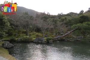 Tenryu-ji Garden 2