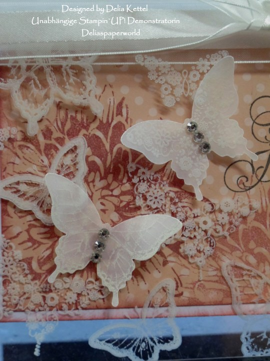 Acrylic Butterflies Rosè 3