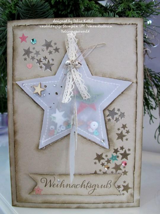 Weihnachtskarte mit Vellum-Stern 1 by Delia Kettel