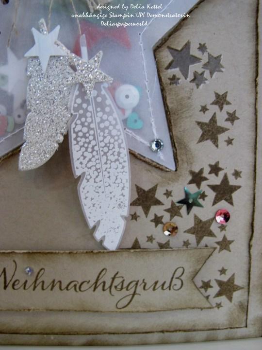 Weihnachtskarte mit Vellum-Stern 4 Delia Kettel