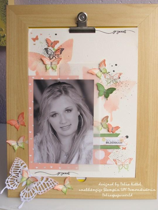 Layout Schmetterlinge Delia Kettel