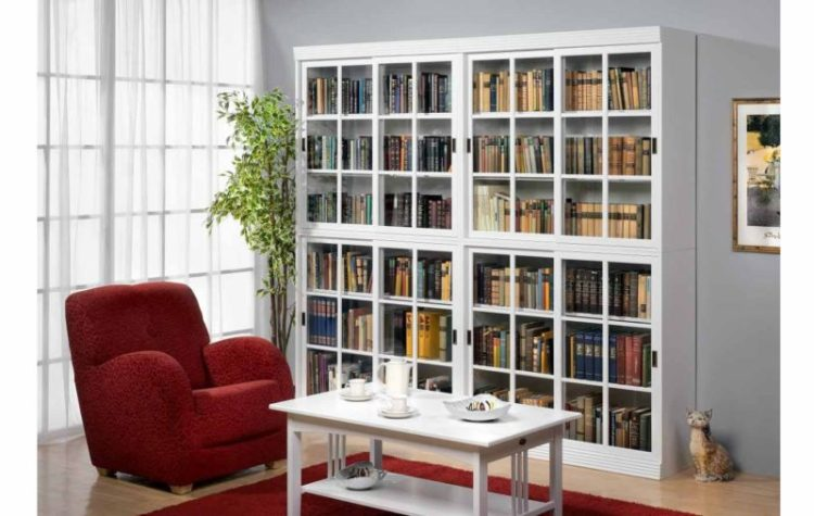 Bookshelf with Doors