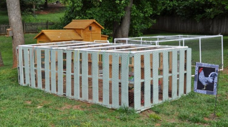 Pallet fence for chickens