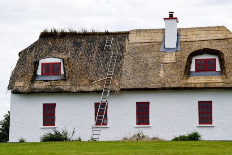 Maintenance of a Thatched Roof