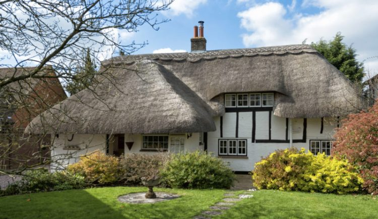 15 Thatched Roof Ideas Advantages And Disadvantages
