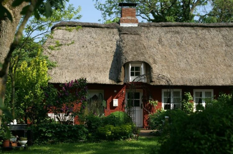 Thatched Roof Care