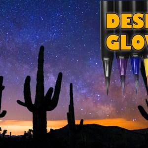 Desert Cactus Sunset