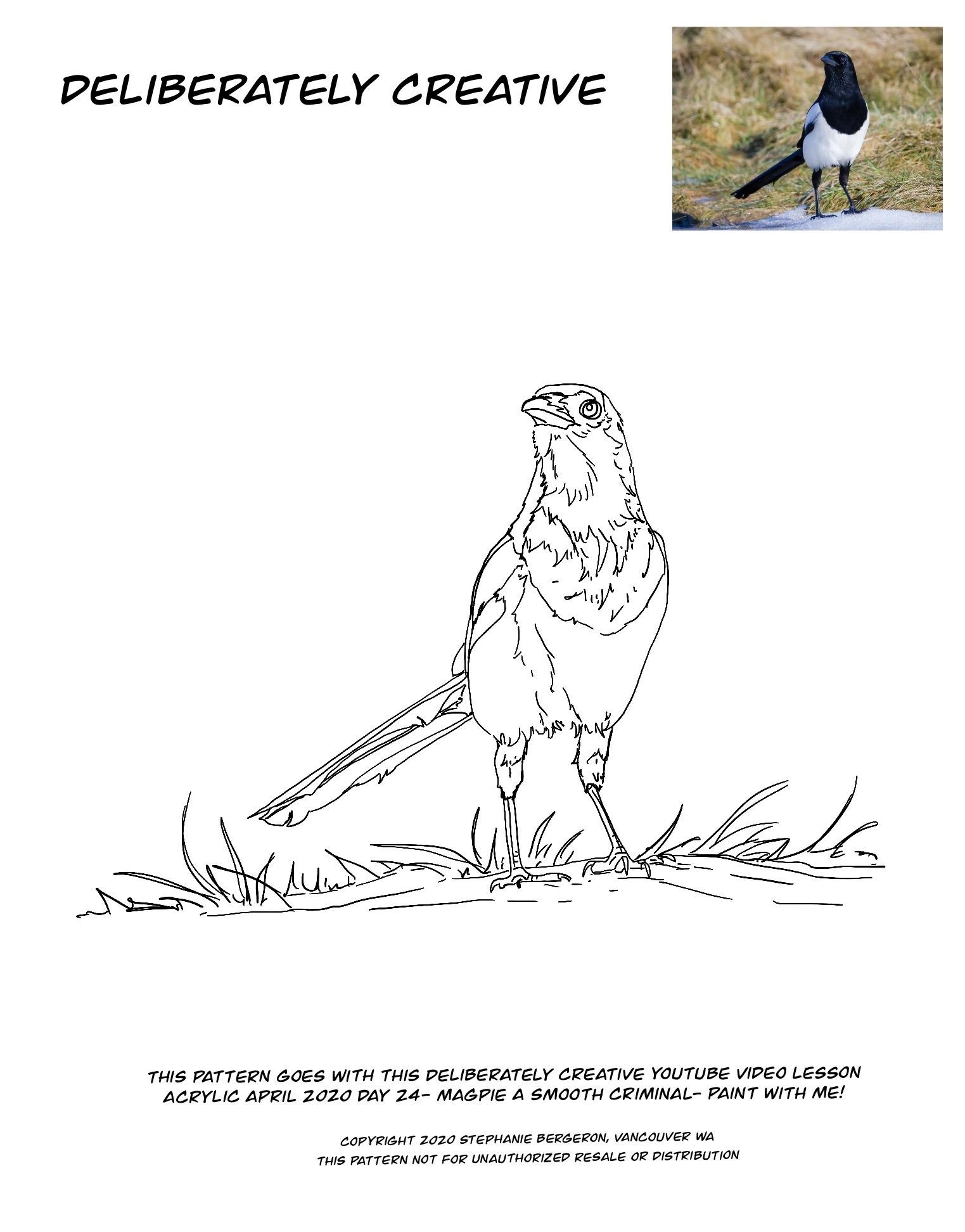 Line art of Magpie bird