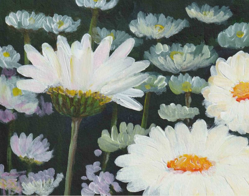 """Daisies (<span class=""""has-inline-color has-pale-pink-color"""">SOLD</span>)"""