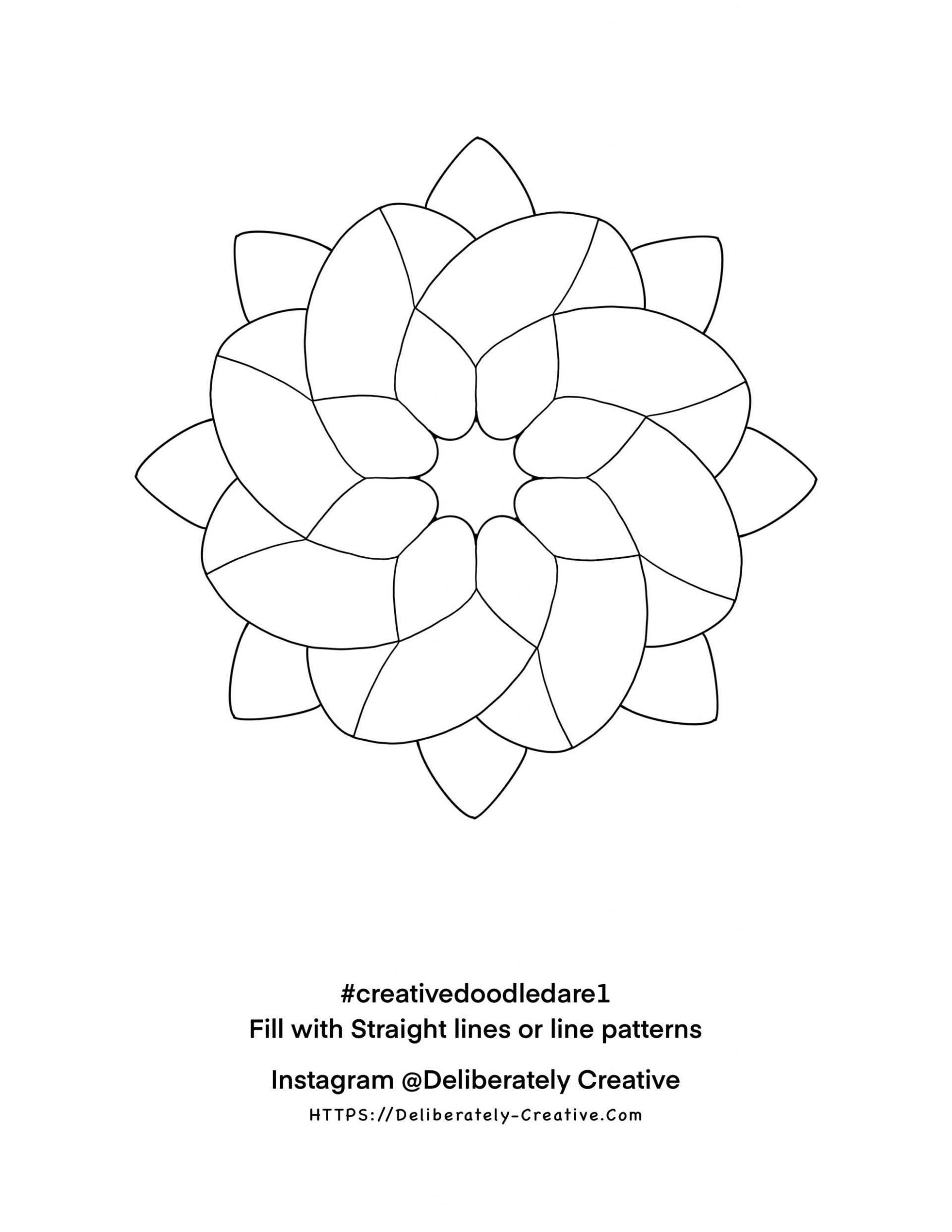 Black outline star flower