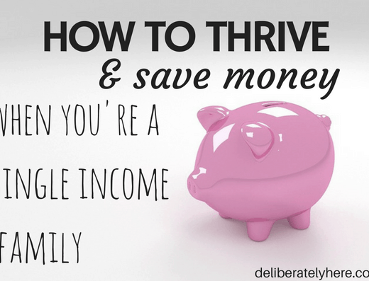 How to Thrive & Save Money When You're a Single Income Family