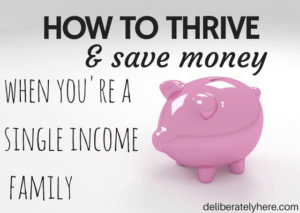 How to Thrive and Save Money When You're a Single Income Family