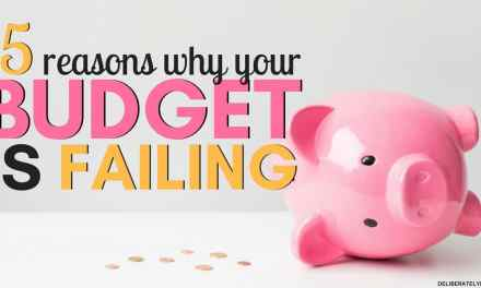 15 Reasons Why Your Budget is Failing