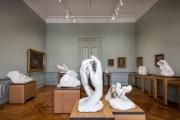 Rodin, une rénovation bien pensée