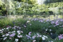 Festival international des jardins de Chaumont-sur-Loire