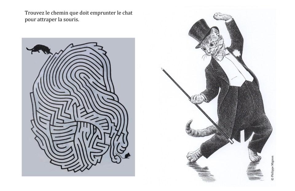 Jeu : le chat, la souris et le labyrinthe © Philippe Mignon