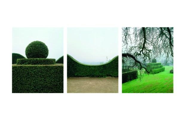 """Yann Monel, """"La Fable du jardin"""" (détail)"""