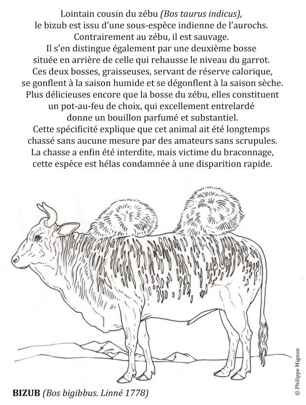 COLORIAGE - Le bizub © Philippe Mignon