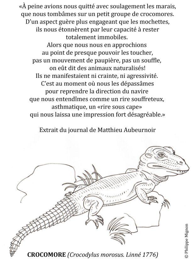 Coloriage - Le crocomore © Philippe Mignon