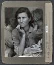 Dorothea Lange, retour sur icône