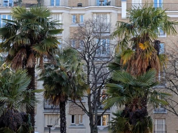 Palmiers et HBM rosés - Porte Dorée © Gilles Walusinski