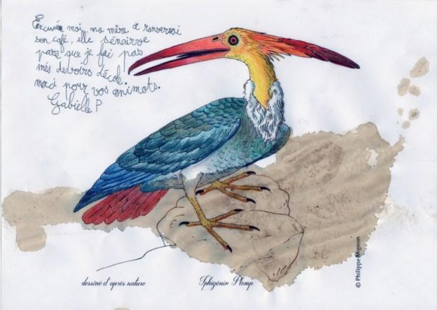 Un oiseau inconnu colorié par Gabielle P. sur un dessin original de Philippe Mignon
