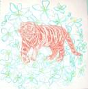 XXXV. Un tigre atterrit