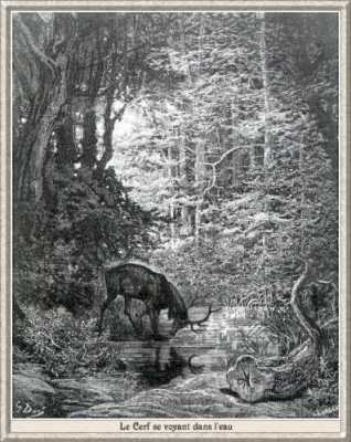 Gustave Doré, Le cerf se voyant dans l'eau
