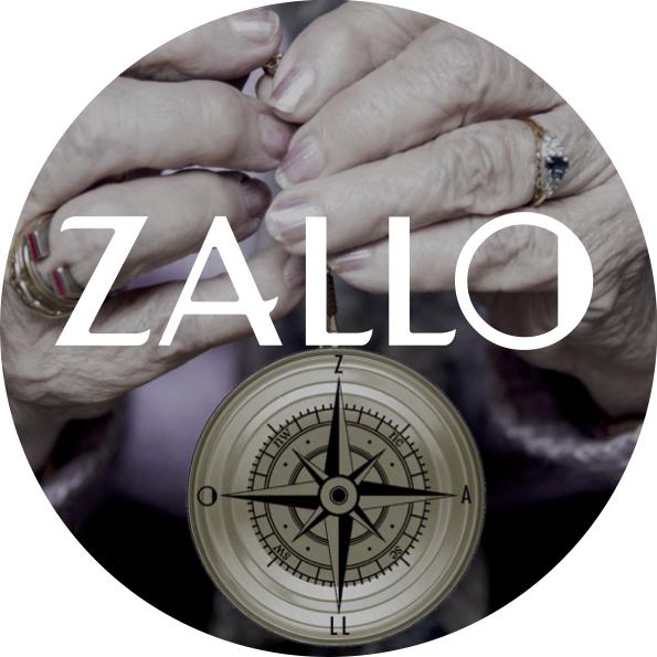 zallo_story_en