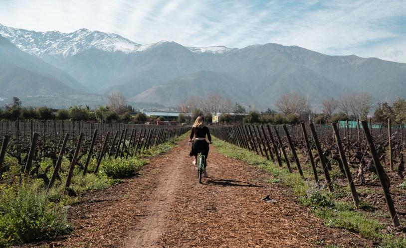 As vinicolas de Chile são um dos motivos para visitar o país
