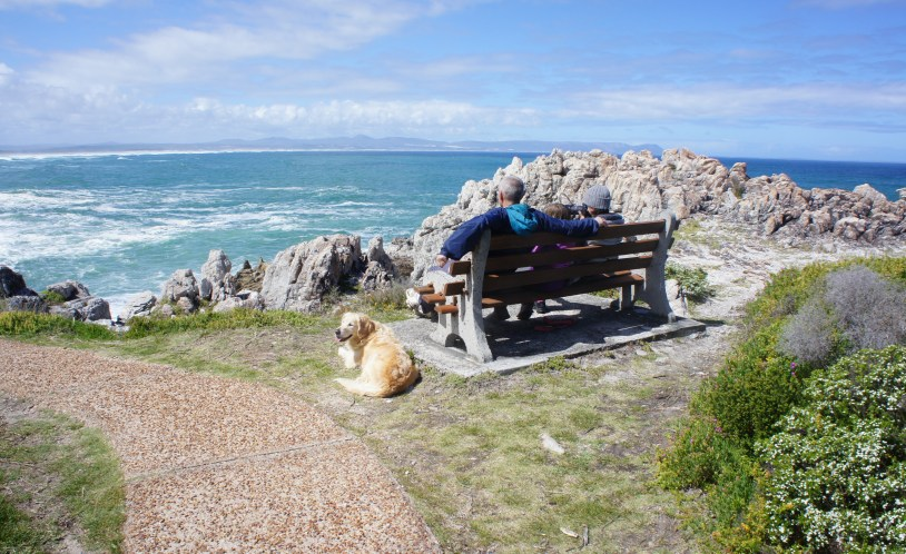 Familia e golden retriever em mirante em Hermanus, melhor cidade da Africa do Sul para ver baleias.