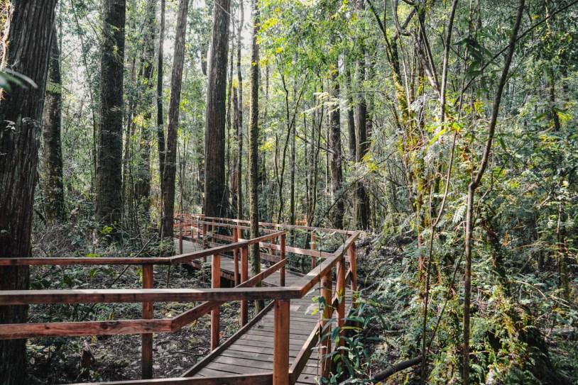 Reserva em Lahuen Nadi, em Puerto Montt, na região dos lagos do Chile