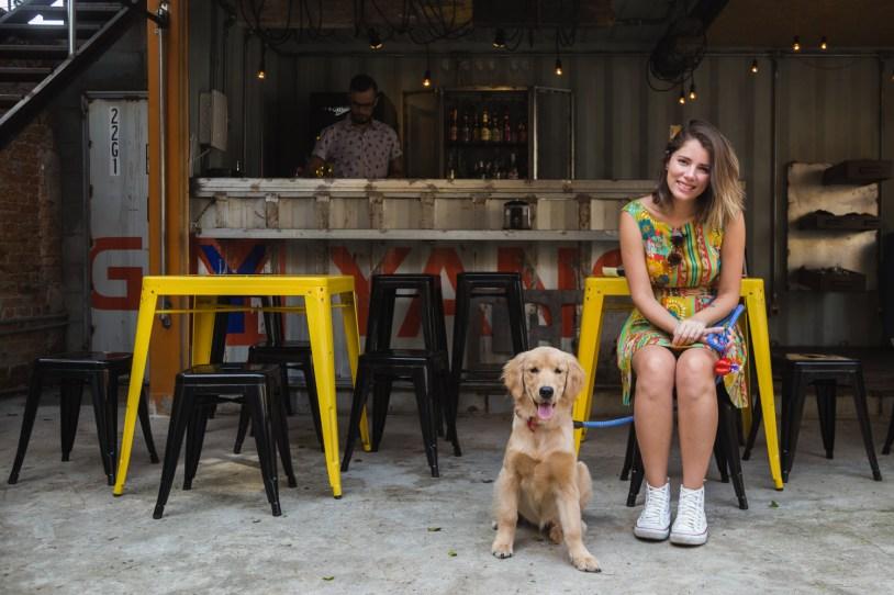 Bar e cachorro no Luz, Camera, Burguer, hamburger na Vila Mariana, em São Paulo