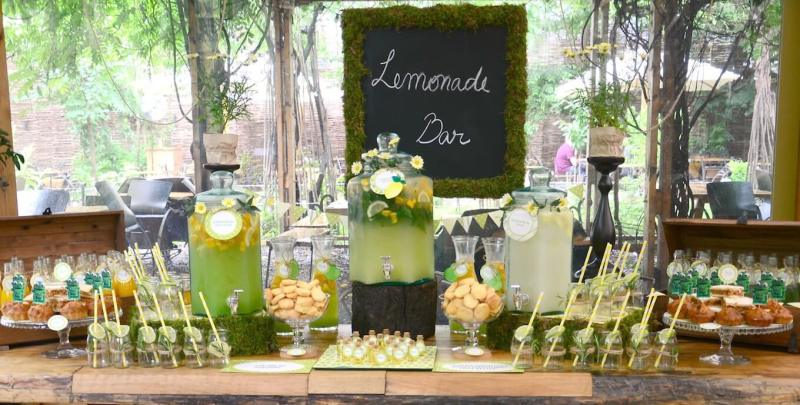 lemonade bar, bar de limonada, garden party, limonada