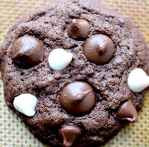Gluten Free Triple Chocolate Chip Cookies