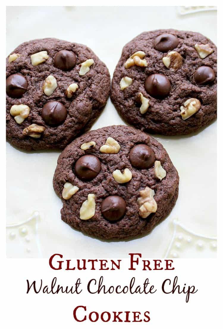 The best Gluten Free Walnut Chocolate Chip Cookies - an addicting combination of nuts and chocolate - no one will ever know they are gluten free! | www.OurLittleEverything.com