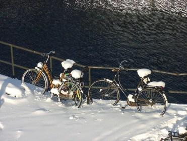 Bikes of Holland 1