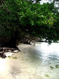 PulauSepa-06