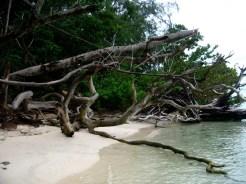 PulauSepa-07