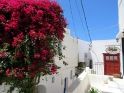 Paros-Naxos-Mykonos-09