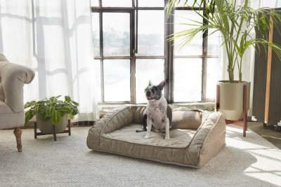 Runyon Pet Bed (4 Sizes / 3 Colors)