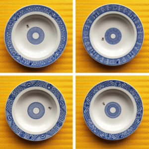 CALAMITYWARE SHALLOW BOWLS W/FLY