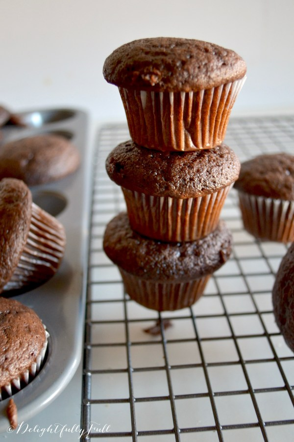 Chocolate Pudding Cupcake w/ Nutella Frosting