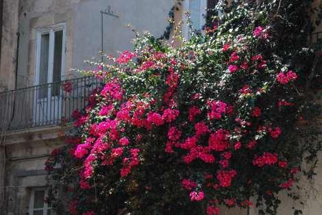 Siracusa_Courtyard
