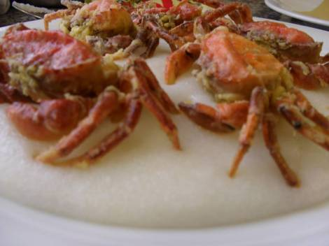 Visit Italy_Moleche fritte