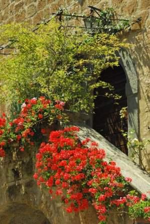 Civita Bagnoreggio_the dying city_101