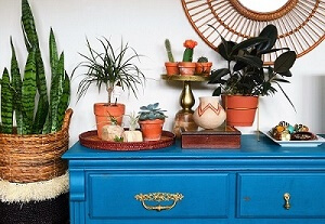thrift-dresser